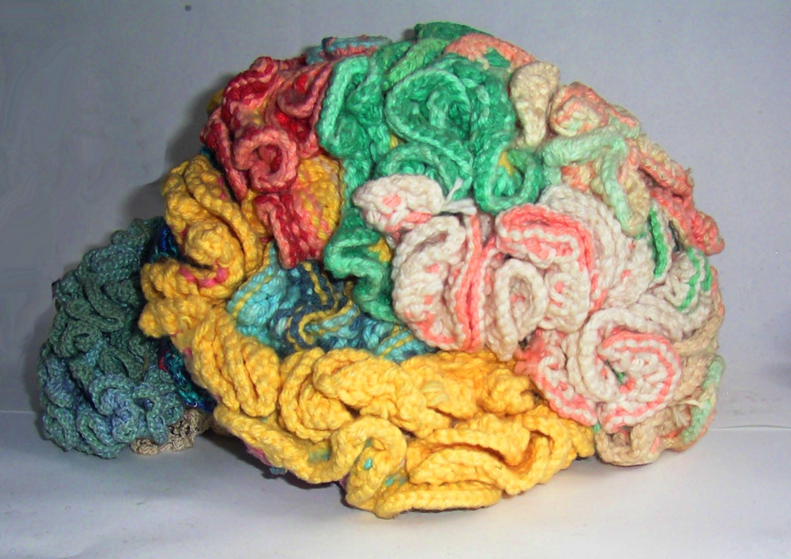 [ 'Knitted brain', Karen Norberg ]