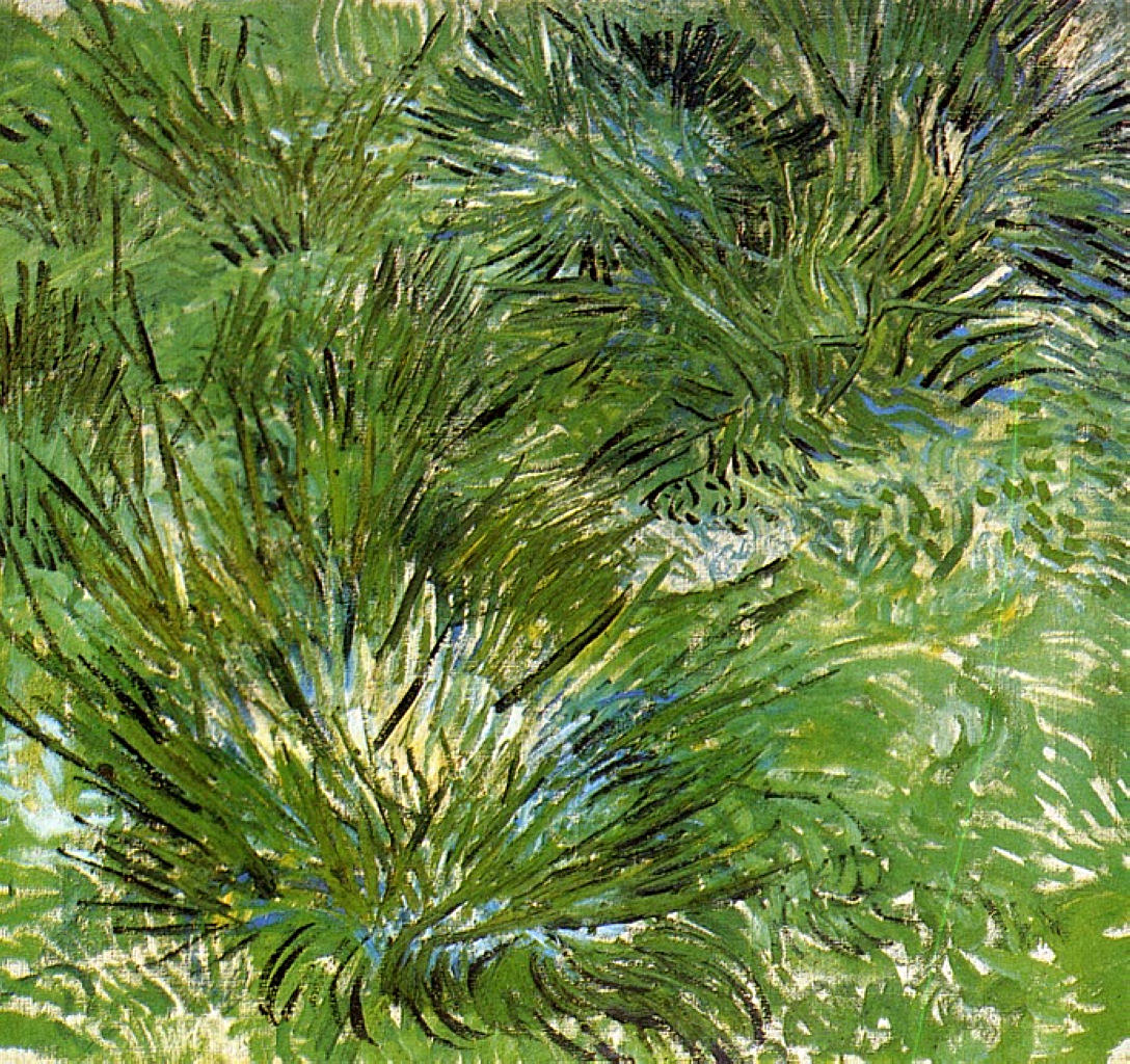 ['<em>Clumps of Grass</em>' ]
