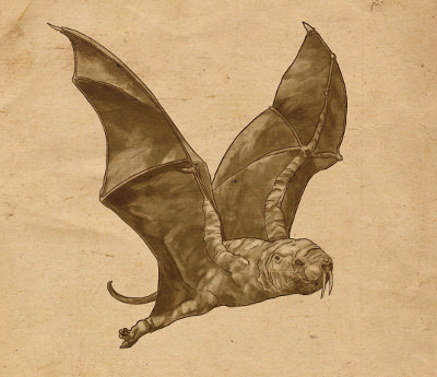 ['<em>Naked mole bat</em>' ]